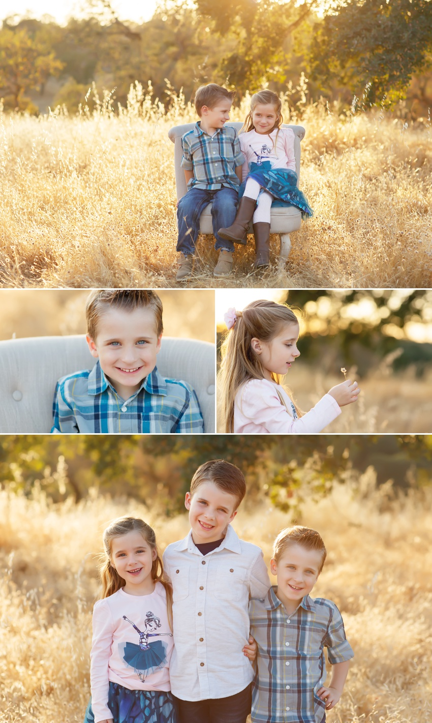 Fall family pictures in Folsom with El Dorado Hills photographer Colleen Sanders grasses oak trees golden light kids family fall mini sessions Sacramento area